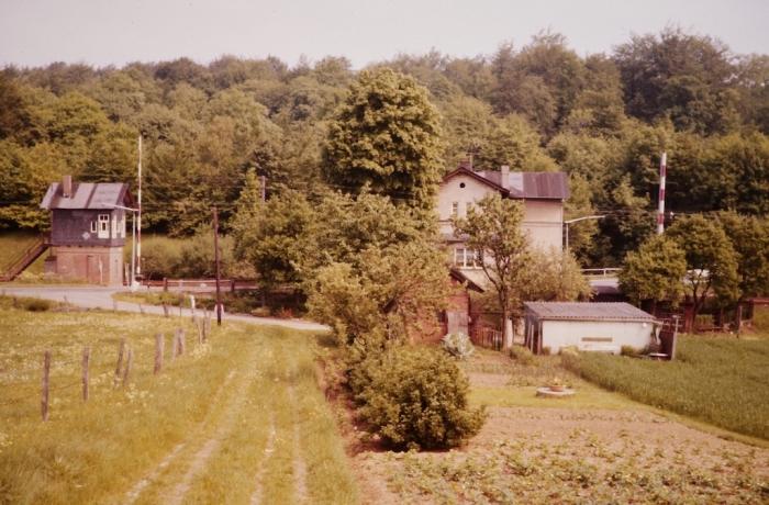 Risch Blog2